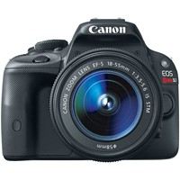 image for Canon EOS Rebel SL1 18.0 MP CMOS Digital SLR with EF-S 18-55mm IS STM Lens + SanDisk Extreme 16 GB SDHC Class 10 UHS-1 Flash Memory Card 45MB/s SDSDX-016G-AFFP + AmazonBasics Holster Camera Case for DSLR Cameras (Black)